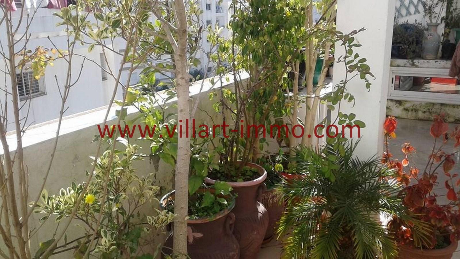 7-Vente-Appartement-Tanger-Route-de-Rabat-Terrasse 3 -VA476-Villart Immo