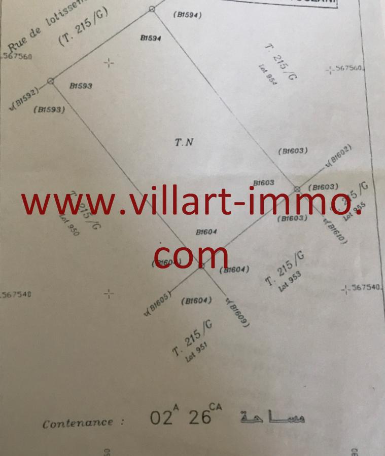 2-Vente-Terrain-Tanger-Gzenaya-VT28-Villart Immo (Copier)
